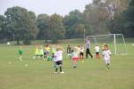 Training am 15.07.2014